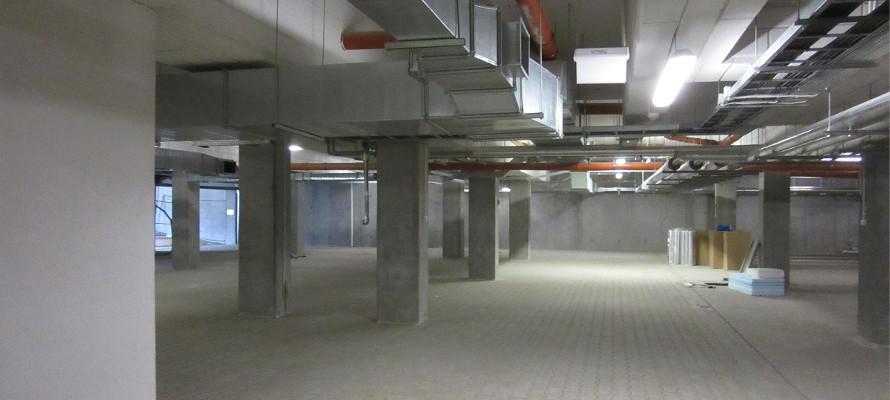botanika_prace w budynku
